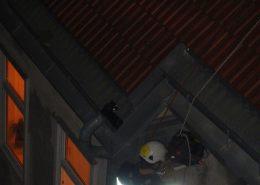 Höhenrettungsgruppe der Berufsfeuerwehr Wien rettet Katze vom Dach