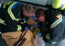 Frau aus brennender Wohnung gerettet, Katze wiederbelebt