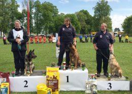 Gold und Bronze für die Rettungshunde des Katastrophenhilfsdienst des Wiener Landesfeuerwehrverbandes