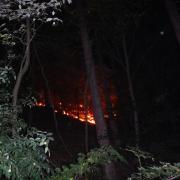 Nächtlicher Waldbrand im Grenzgebiet Wien-Niederösterreich rasch gelöscht
