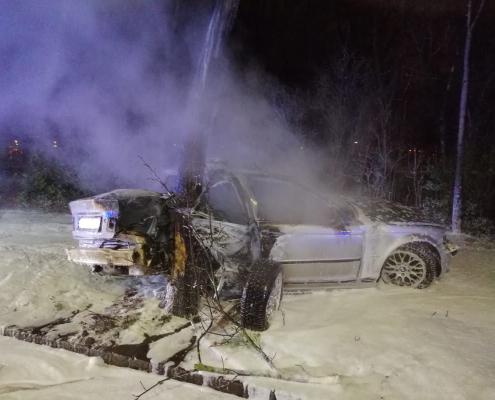 Pkw prallt gegen Baum und fängt Feuer - ein Schwerverletzter